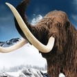 Výstava realistických modelů vyhynulých zvířat doby ledové v Brně