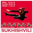 Národní balet Gruzie SUKHISHVILI v Brně