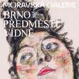 Brno předměstí Vídně - stálá expozice - Místodržitelský palác MG