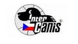 Mezinárodní výstava psů INTERCANIS 2016 v Brně
