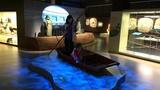 Národní zemědělské muzeum v Praze otevřelo svoji nejnovější expozici věnovanou rybářství