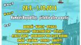 Pilsen Buksing Fest 2016