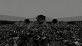 SHADOW MEADOW / Jan Mocek Temná vizuální báseň o nepřítomnosti - Divadlo Alfred ve dvoře