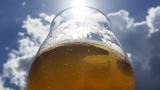 Pivní degustace – Letní pivo