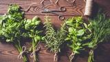 Plané kvítí v kuchyni – Cyklus kulinářských workshopů