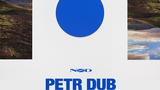 Petr Dub - Projektivní test