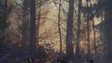 Výstava Theodora Pištěka - Konec lesa v Galerii Klatovy/Klenová
