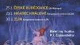 St. Petersburg Festival Ballet - Louskáček