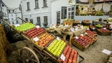 """Flora Olomouc zve na podzimní """"Zahradní slavnost"""""""