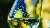 Vrcholem vinařské sezony bude Vinobraní sv. Kláry