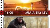 CargoBIO - kino na lodi 12.7.: Mia a bílý lev / Nedotknutelní