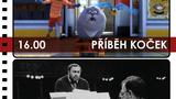 CargoBIO - kino na lodi 19.7.: Příběh koček / Pavarotti