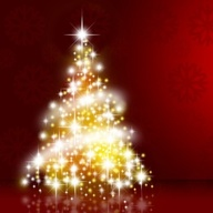 Vánoční výstava v Domě zahrádkářů - Velké Opatovice
