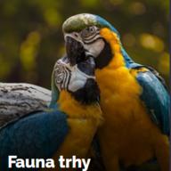 Fauna trhy 2019 - Výstaviště Černá louka Ostrava