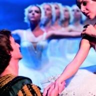 The Best of Swan Lake (hostující představení) - Divadlo Hybernia