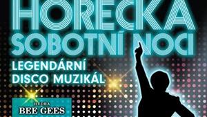 Horečka sobotní noci - muzikál pražského Divadla Kalich