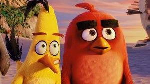 Angry Birds ve filmu 3D