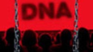 DNA - Dennis Kelly