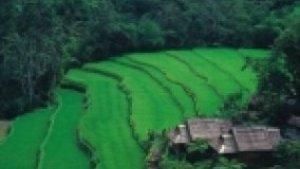Jiří Kolbaba - Bali - můj druhý domov
