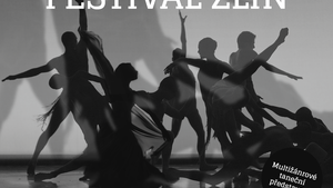 Dance Festival Zlín 2017 – Multižánrový taneční festival