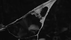 Karel Kuklík: Fotografický dialog s krajinou