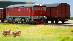 Výstava železničních modelů a kolejišť