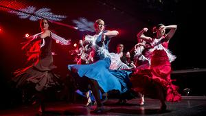 Den flamenka představí andaluské legendy i vynikající interprety ze Slovenska, Čech či Iránu