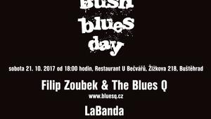 BUSH BLUES DAY