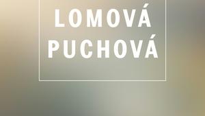KNAP, LOMOVÁ, PUCHOVÁ