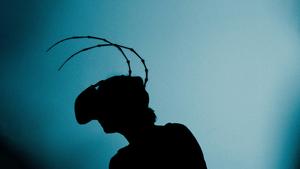 Proměna VR - VRwandlung - Metarmorphosis VR