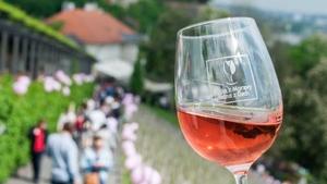 Svátek růžových vín 2018