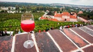 Festival jak víno 2018