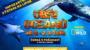 Impozantní edukativní výstava Obři oceánů