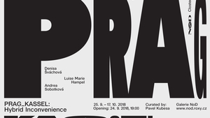Galerie NoD se v nové výstavě Hybridní nesnáze obrací k česko-německé historii