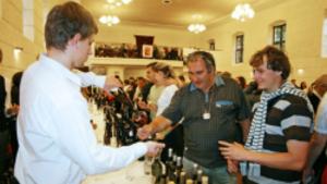 Výstava vín Mikulovské vinařské podoblasti