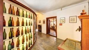 Výstava fotografií manželů Kocourkových Specific Place