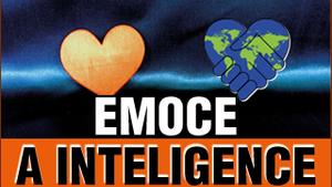 Emoce a inteligence