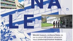 """výstava """"BIENÁLE"""" - Čáslav"""