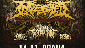 INGESTED (UK) +  WITHIN DESTRUCTION (SLO) + SIGNS OF THE SWARM (CAN) + DISTANT (NL)