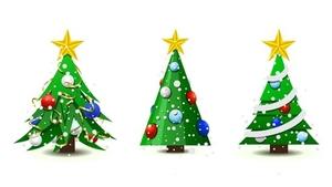 Rozsvícení vánočního stromu 2019 - Český Krumlov
