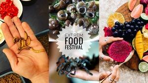 Extrem food a travel festival Pardubice