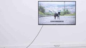 Corporate Bodies - Pragovka Gallery