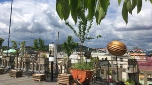 Letošní sezóna na Střeše Lucerny bude doslova s-třešní.