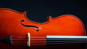 Čas houslí: Pět století královského nástroje
