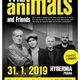 The Animals and Friends poprvé v Praze