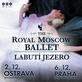 Royal Moscow Ballet zatančí v Ostravě Labutí jezero