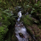 Naučná stezka Olešenský potok