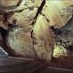 Mladečské jeskyně