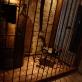 Museum of Torture – Muzeum útrpného práva a mučicích nástrojů