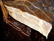 Amatérská jeskyně pro zvědavé